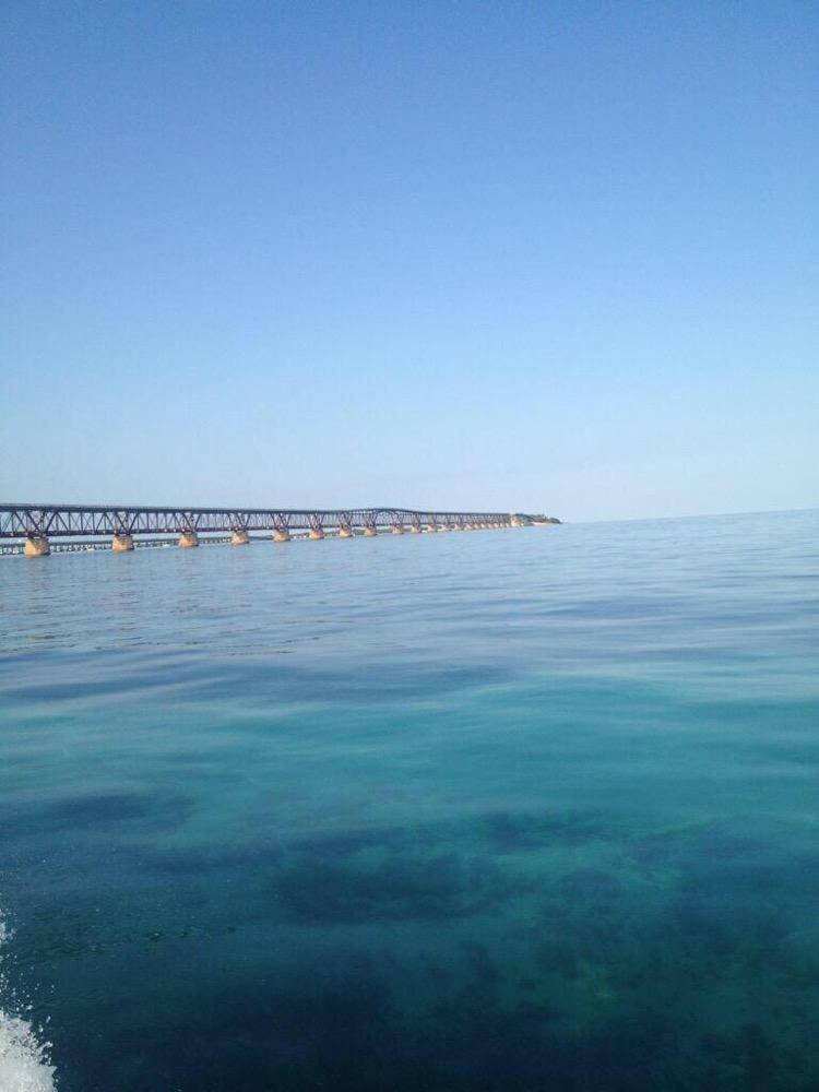 Spring Tarpon Fishing @ Bahia Honda State Park