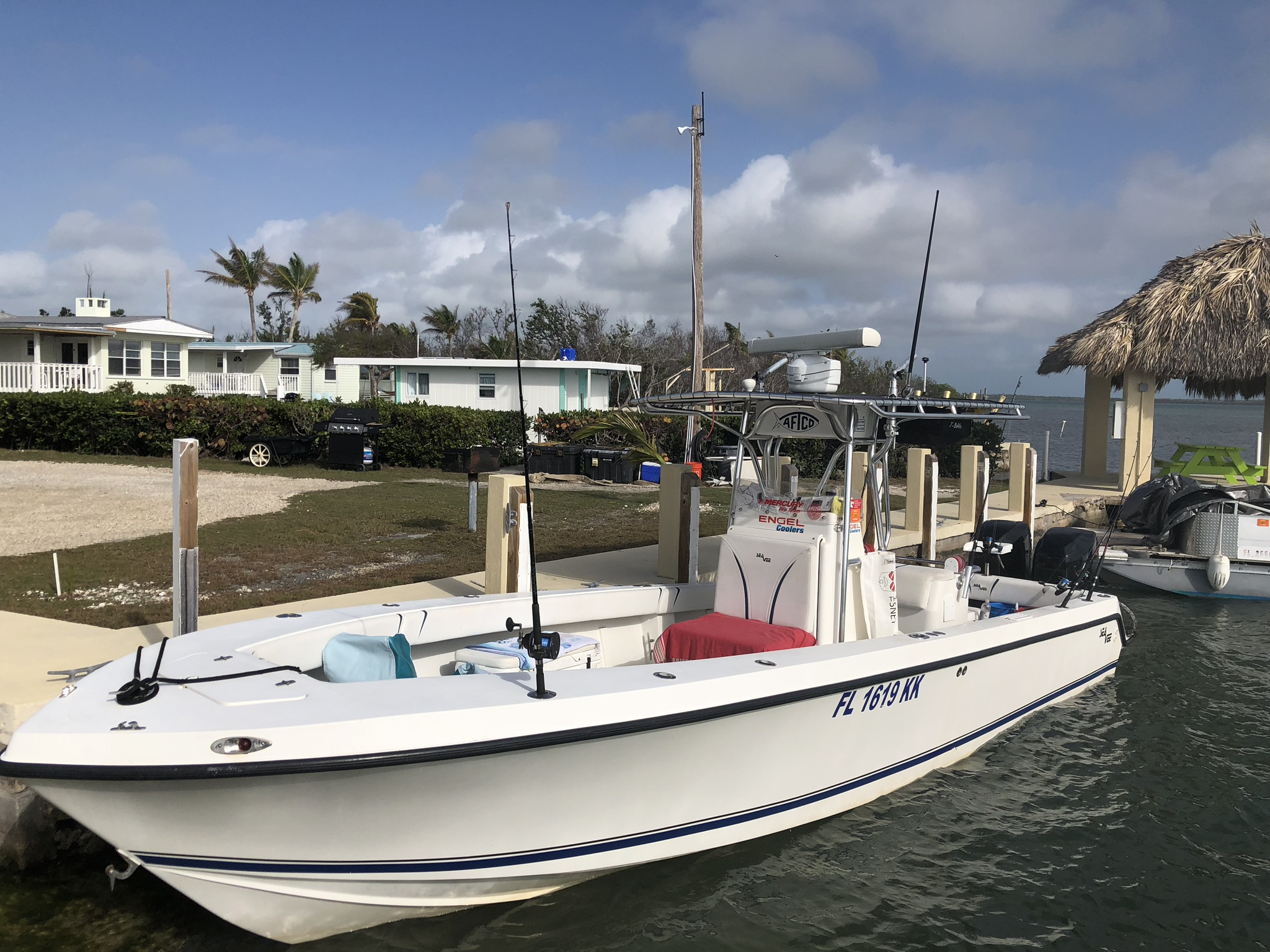 Our Boat 29 ft. SeaVee